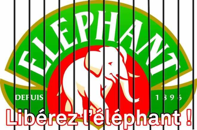 ob_d4c0b151dc34e3bccc75a0dd2a55766a_liberez-l-elephant.png
