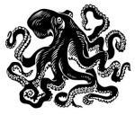 pieuvre-dessin