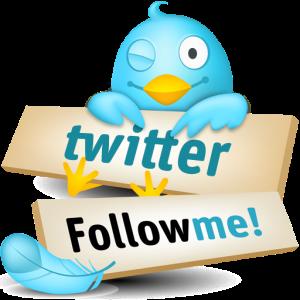 Comment-obtenir-plus-de-followers-sur-Twitter
